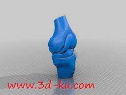 3D打印模型dy1030_nb1129_w256_h193_x的图片