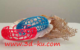 3D打印模型dy4022_nb8931_w256_h162_x的图片