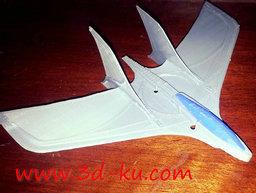 3D打印模型飞行翼的图片